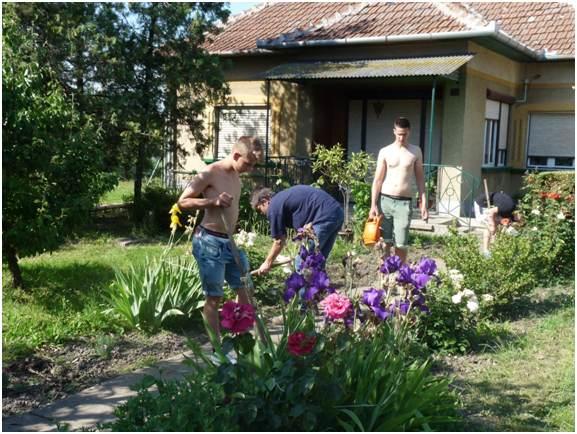 Ments meg egy kertet
