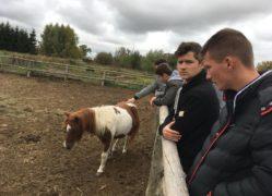 Erasmus+ diák mobilitás program -2018-10-08–004